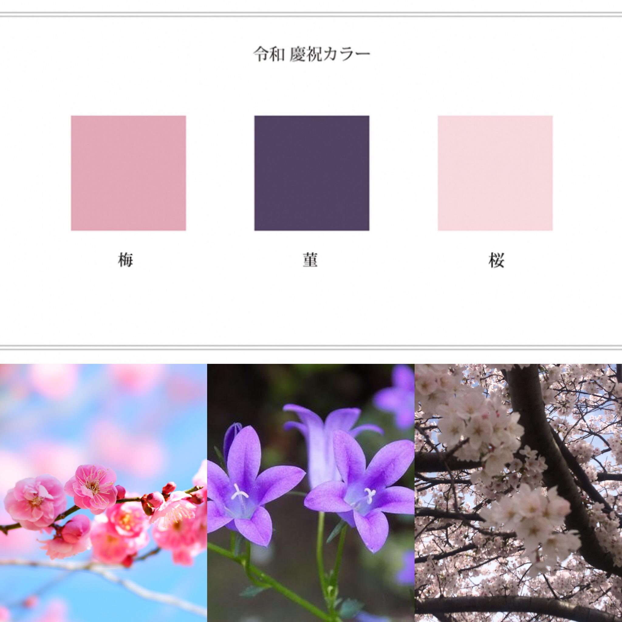 幸福感と美のピンク、高貴で上品な紫は、令和にぴったりですね。個人的には、令和の新元号から、愛と美しさ、優しさ溢れるエネルギーを感じます。